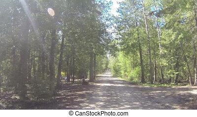 Camera car in camping site