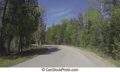 Camera car in national park