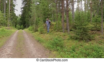 Camera focusing to hiker with hiking sticks in forest