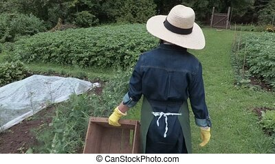 Camera follow female gardener with wooden box