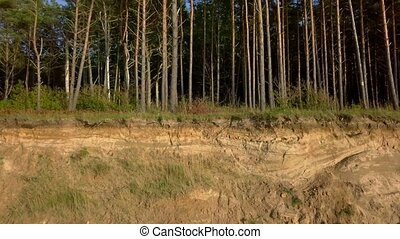 Camera goes near the steep bank with trees