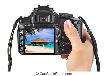 Camera in hand and beach landscape