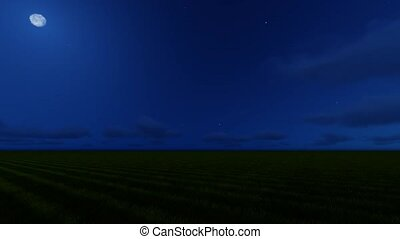Camera movement in a circle. Twilight on a green field.