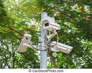 camera surveillance in the park, id