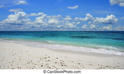 Camera tilt up of the peaceful exotic beach