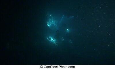 Cameraman at night with flashlights on background underwater...
