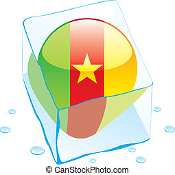 cameroon button flag frozen in ice