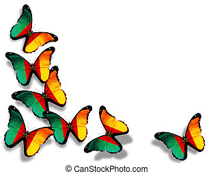 Cameroon flag butterflies, isolated on white background