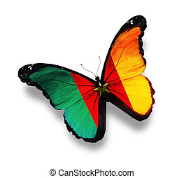 Cameroon flag butterfly, isolated on white