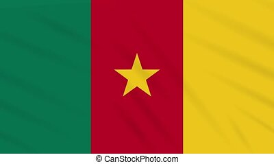 Cameroon flag waving cloth, background loop