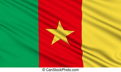 Cameroon Flag, with real structure of a fabric