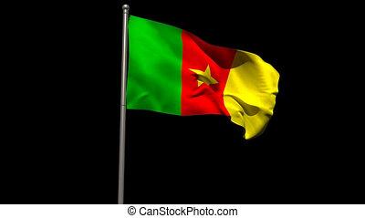 Cameroon national flag waving