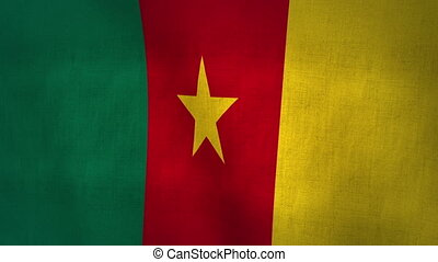 Cameroon Waving Flag (Loop-able) - World Cup 2014 Qualifier...
