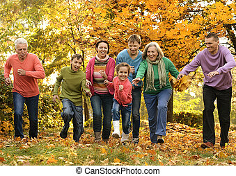 caminata, un, grande, familia