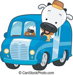 caminhão, leite