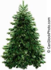 caminho, cortando, árvore, natal