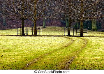 caminho, direção, a, árvores