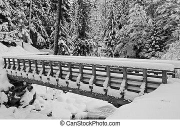 caminho, neve