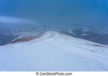 camino, colina, nevada, debajo