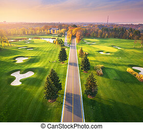 camino, curso, vista, autumn., golf, por, ocaso, aéreo