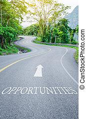 camino, curva s, escrito, oportunidades