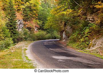 camino de la montaña, en, parang, rumania