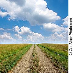 camino de tierra, por, el, pradera