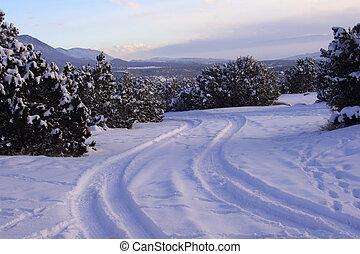 camino, nevoso