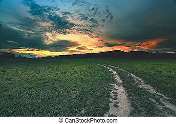 camino, paisaje, curvo, rural