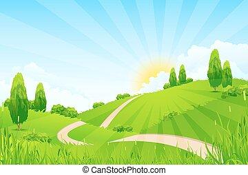 camino, paisaje verde, árboles