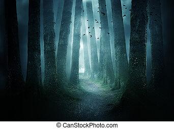 camino, por, un, oscuridad, bosque