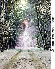 camino rural, en, el, nieve, por la noche