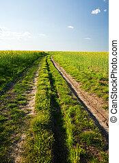 camino rural, en, ocaso