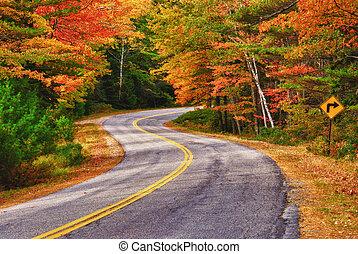 camino tortuoso, curvas, por, otoño