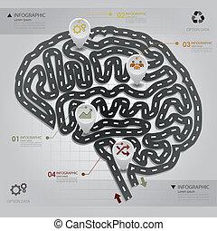 camino, y, calle, empresa / negocio, infographic, cerebro, forma, diseño, plantilla