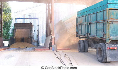 camion, grain blé, déchargement, warehouse.