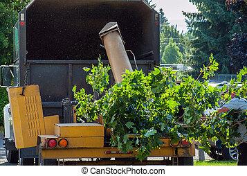 camion, râper, bois, arbre, chipper