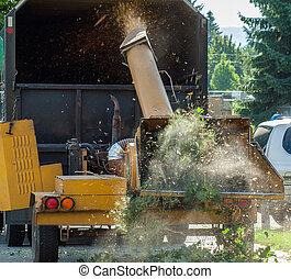 camion, tagliuzzamento, legno, albero, chipper