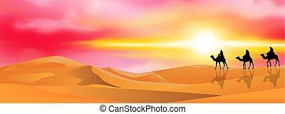 cammello, tramonto, roulotte, deserto