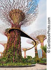 camminare, baia, albero, singapore, ponte, super, giardini