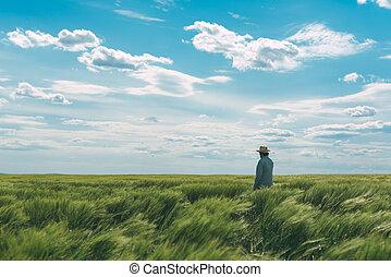 camminare, campo frumento, verde, contadino, attraverso