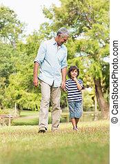 camminare, figlio, parco, erba, nonno