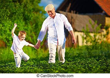 camminare, file, nipote, patata, nonno, loro, felice, fattoria