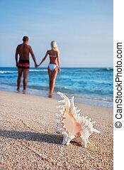 camminare, grande, coppia, contro, mare sabbia, seashell, spiaggia, amare