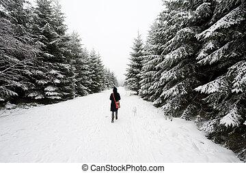 camminare, in, inverno