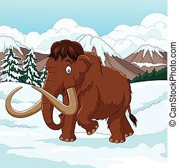 camminare, nevoso, lanoso, campo, mammut, attraverso,...