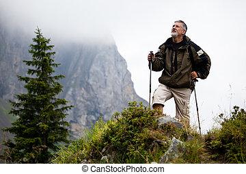 camminare, nordico, anziano attivo, bello, uomo