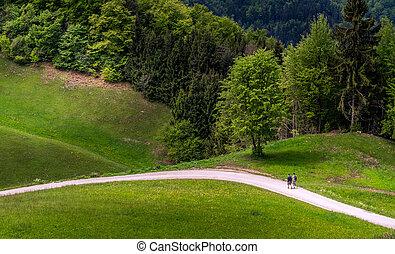 camminare, paesaggio, colline, famiglia