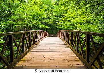 camminare, ponte, sopra, uno, flusso, a, grand'affumicato...