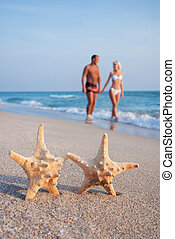 camminare, sguardo, coppia, contro, starfishs, sabbia, altro, mare, ciascuno, spiaggia, amare